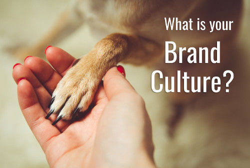 What is your Brand Culture?